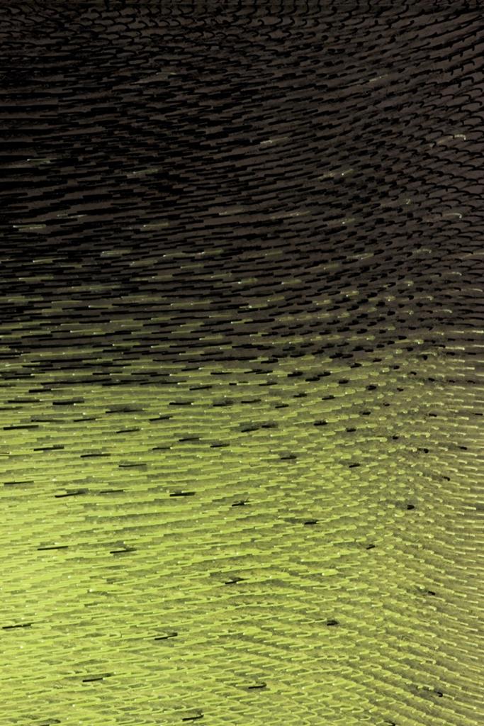 AlbertS_IntentionallyRandomLineStudy_BlackChartreuse_2008_detail_w.jpg