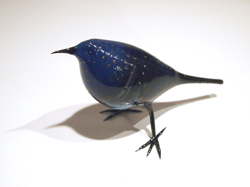 FeroS_Bird1_2015_w.jpg